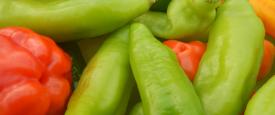 Eingelegte Chilis